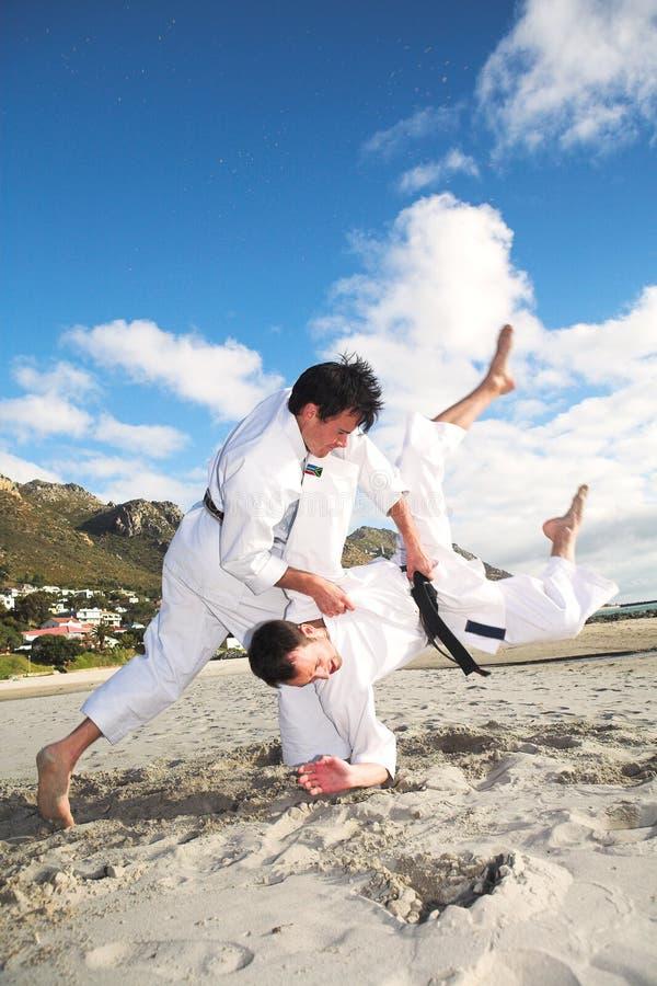 Mensen die Karate uitoefenen royalty-vrije stock foto's