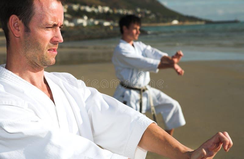 Mensen die Karate uitoefenen stock afbeelding