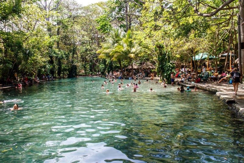 Mensen die in Ojo DE Agua, Nicaragua zwemmen stock afbeeldingen