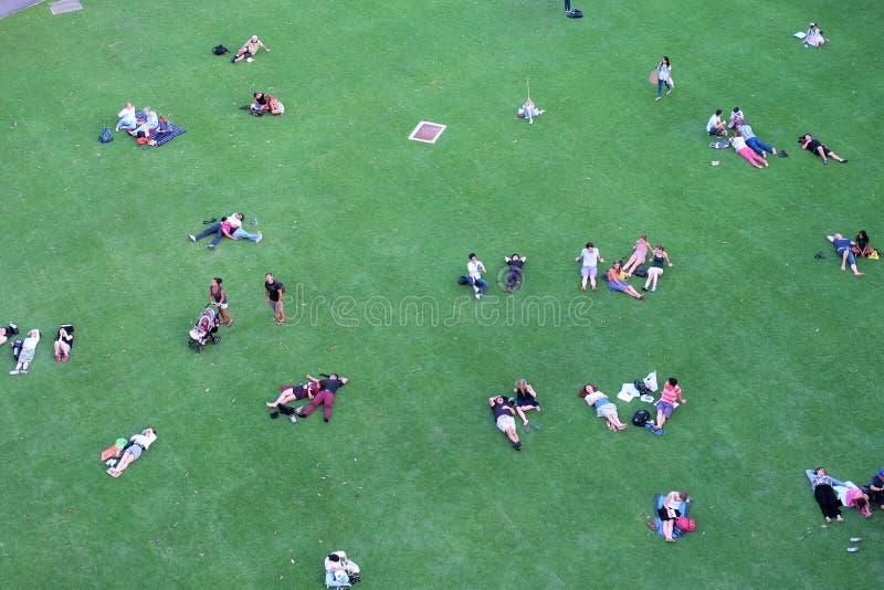 Mensen die op het gazon rusten stock foto's