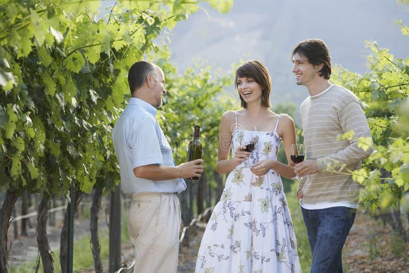 Mensen die Rode Wijn in Wijngaard proeven stock foto's