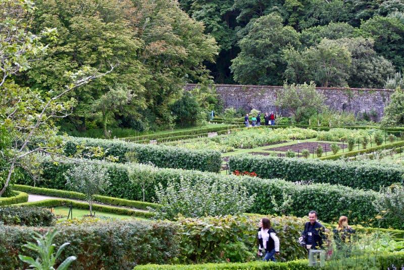 Mensen die rond Victoriaanse ommuurde tuin, Kylemore, Ierland lopen stock afbeelding
