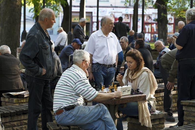 Mensen die schaak in het park spelen royalty-vrije stock afbeelding