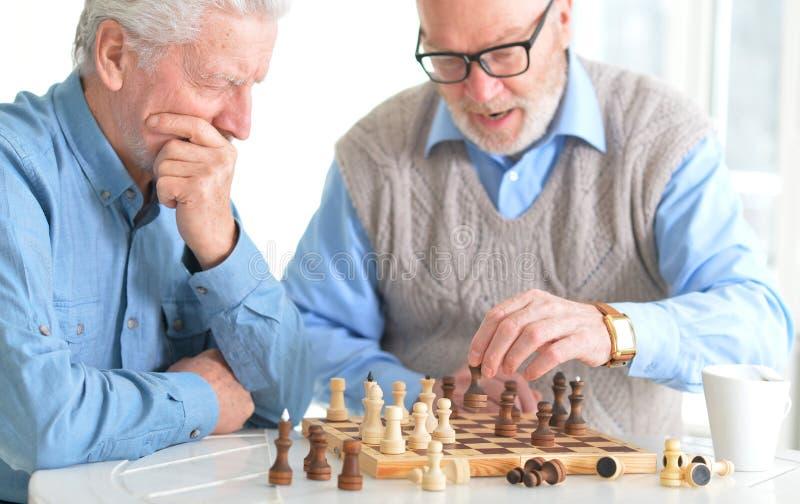 Mensen die schaak spelen royalty-vrije stock afbeelding