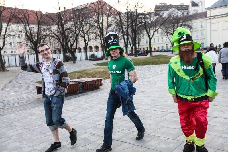 Mensen die St Patrick Dag selebrating royalty-vrije stock fotografie