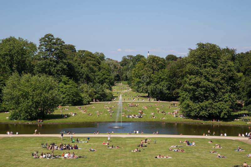 Mensen die van Zondag middag in een park genieten stock afbeeldingen