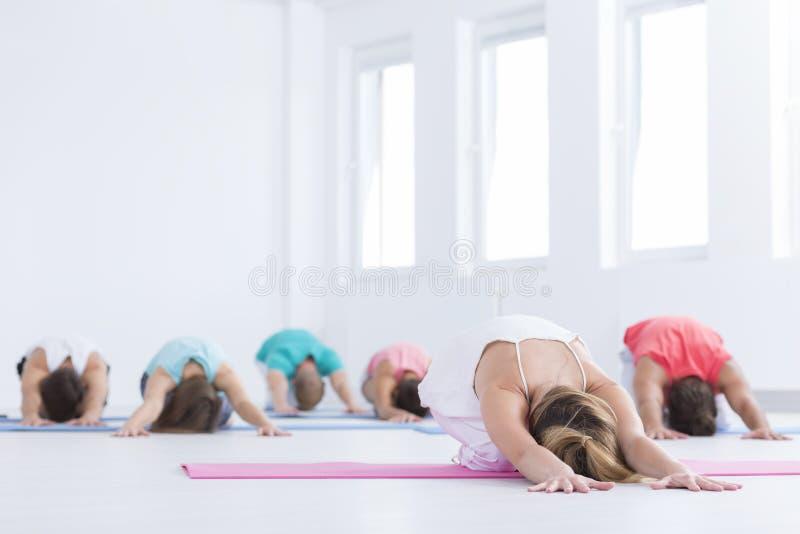 Mensen die zich tijdens yogaklassen uitrekken stock afbeelding