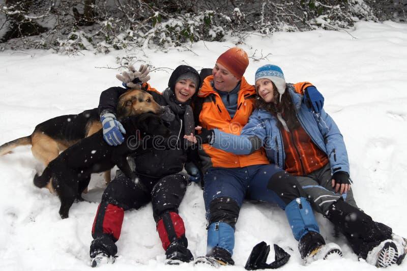 Mensen en honden in sneeuw stock afbeeldingen