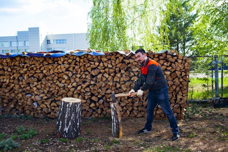 Mensen hakkend hout met een mes Het oogsten daling voor de winter in Rusland Berkbrandhout royalty-vrije stock afbeelding