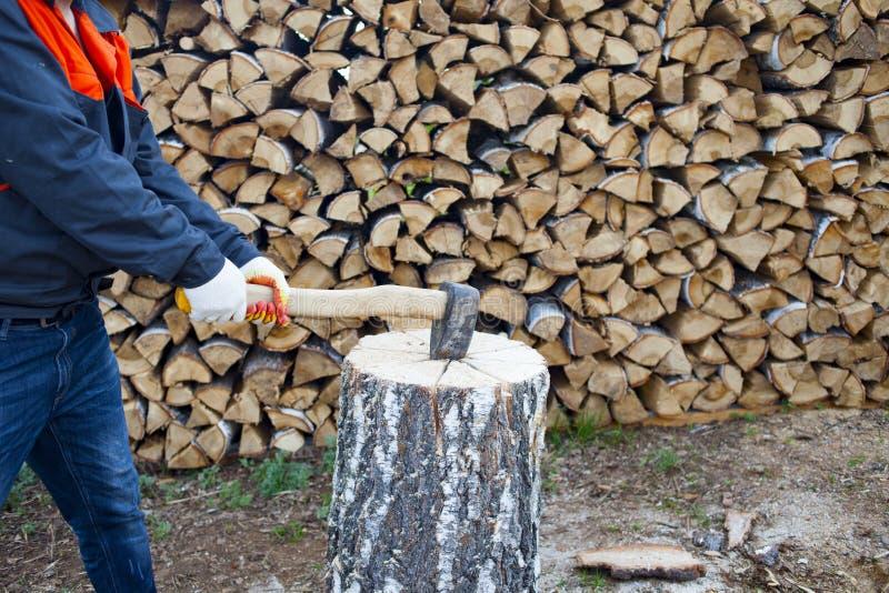 Mensen hakkend hout met een mes Het oogsten daling voor de winter in Rusland Berkbrandhout stock afbeeldingen