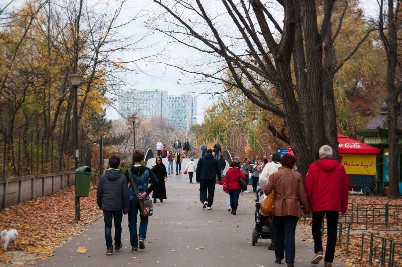 Mensen in het park stock foto's
