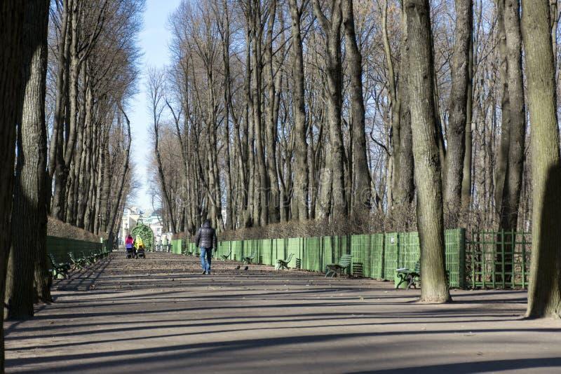 Mensen, mannen die, vrouwen met kinderwagens in het Park, bomen lopen royalty-vrije stock foto