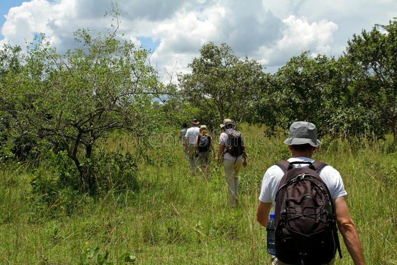 Mensen op het Lopen Safari royalty-vrije stock fotografie