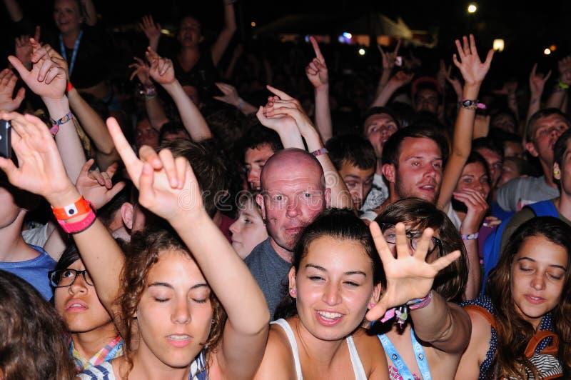Mensen (ventilators) bij FIB (Festival Internacional DE Benicassim) 2013 Festival royalty-vrije stock afbeelding