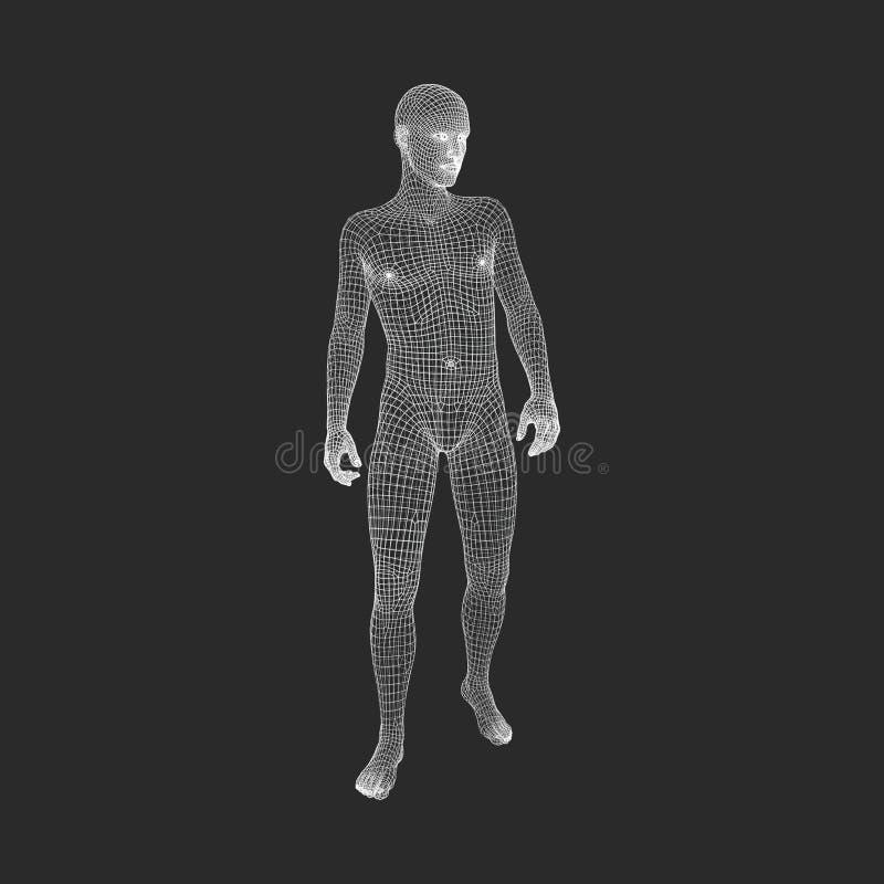 Mensentribunes op zijn Voeten 3D Model van de Mens Geometrisch ontwerp 3d Veelhoekige Behandelende Huid Het Model van de menselij royalty-vrije illustratie