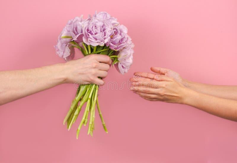 Mensenwapens die boeket van violette dubbele tulpen voor zijn jong meisje geven Vrouwelijke handen die een bloemen Romantische ve stock fotografie