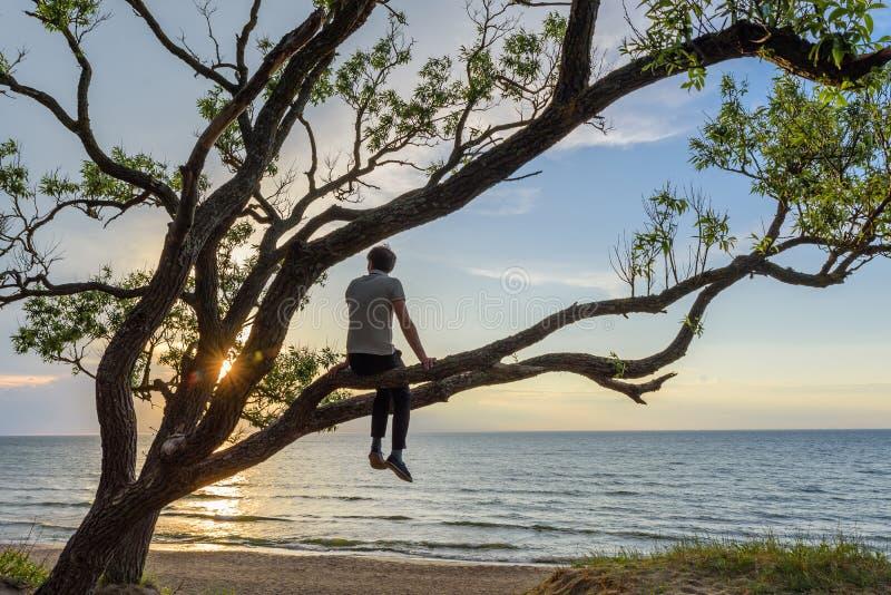 Mensenzitting op de boom het letten op zonsondergang over het overzees, die van een vreedzaam ogenblik genieten stock fotografie