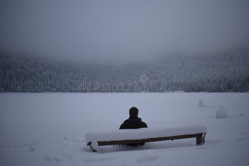 Mensenzitting op een bank die in sneeuw bij een bevroren meer in de winter wordt behandeld stock afbeeldingen