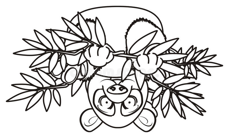 Download Mensonge De Panda De Coloration à L'envers Illustration Stock - Illustration du pose, down: 77150713