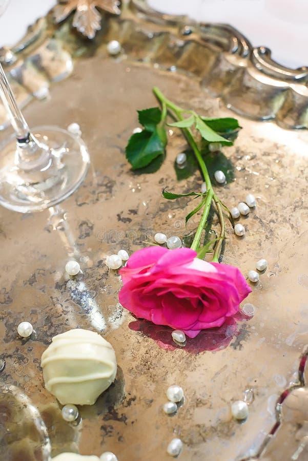 Mensonge simple gentil de rose de rose photographie stock