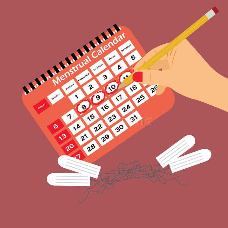 Menstrual calendar with tampons and pads. Menstruation cycle. Hygiene and protection. stock illustration