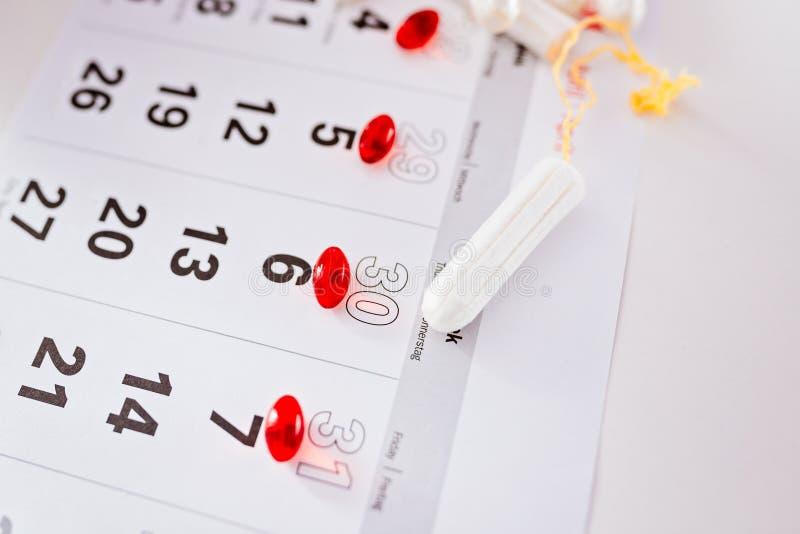 Menstruatiekalender en schone katoenen tampons stock foto
