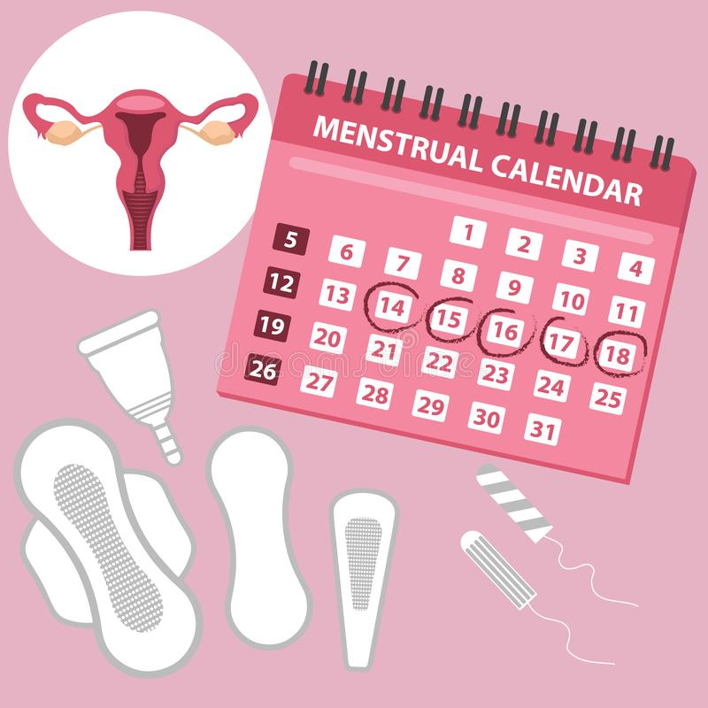 Menstruation calendar with cotton tampons, menstrual cup. Woman hygiene protection. Woman critical days. Set of women s vector illustration