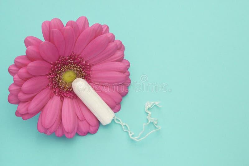 Menstruationtampong, rosa gerberatusenskönablomma Foto för kvinnahygienbefruktning Mjukt mjukt skydd för kritiska dagar för kvinn arkivbilder