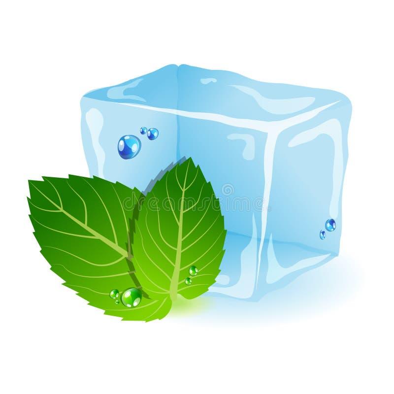 Menta con hielo stock de ilustración