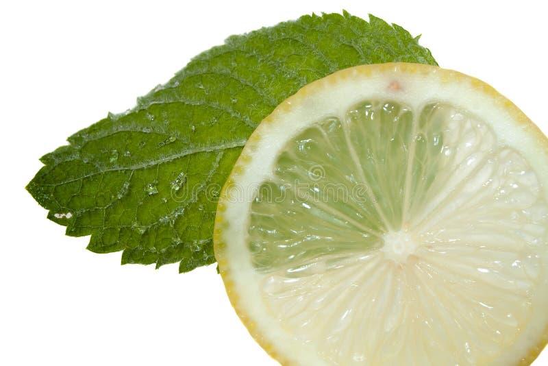Menta di limone fotografia stock libera da diritti
