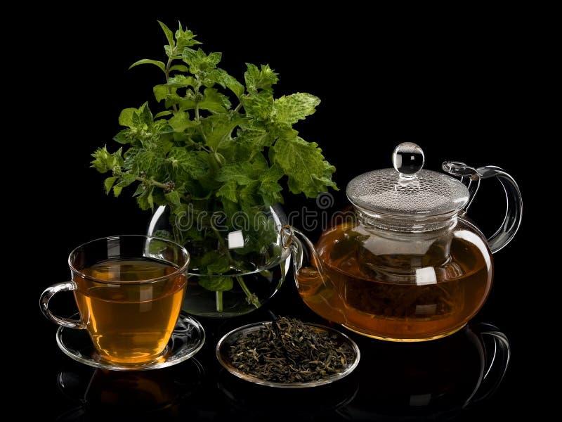 Menta fresca, tè verde delle foglie di tè e una bevanda in articoli da vetro fotografia stock libera da diritti