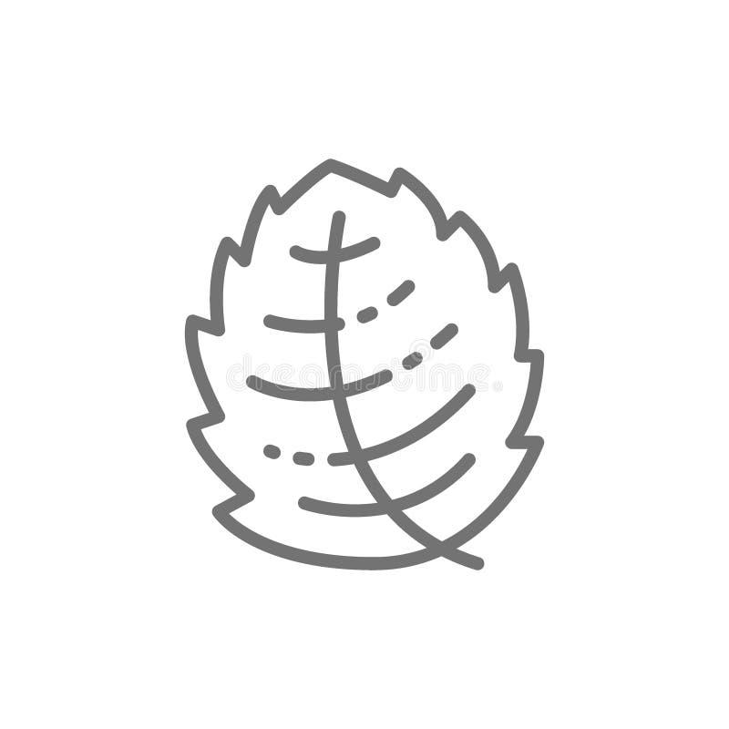 Menta, lechuga, albahaca, línea icono de la hierba stock de ilustración