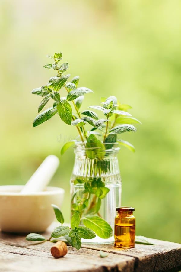 Menta piperita ed olio essenziale della menta piperita immagini stock