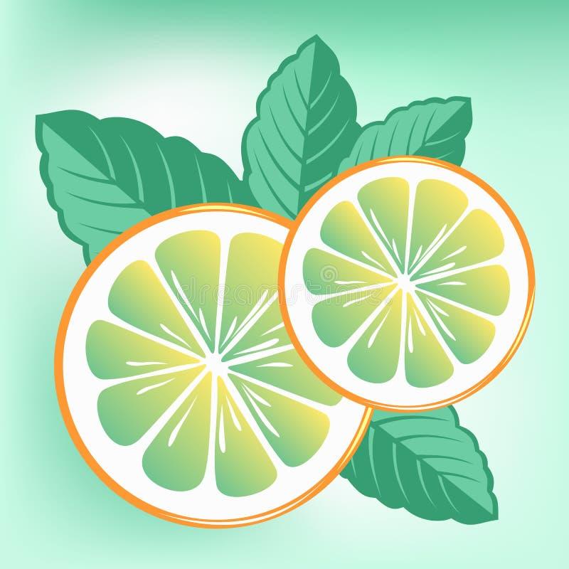 Menta y naranja ilustración del vector