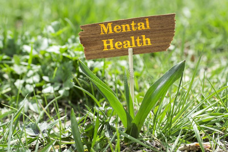 Mental health. On wooden sign in garden with white spring flower royalty free stock photos