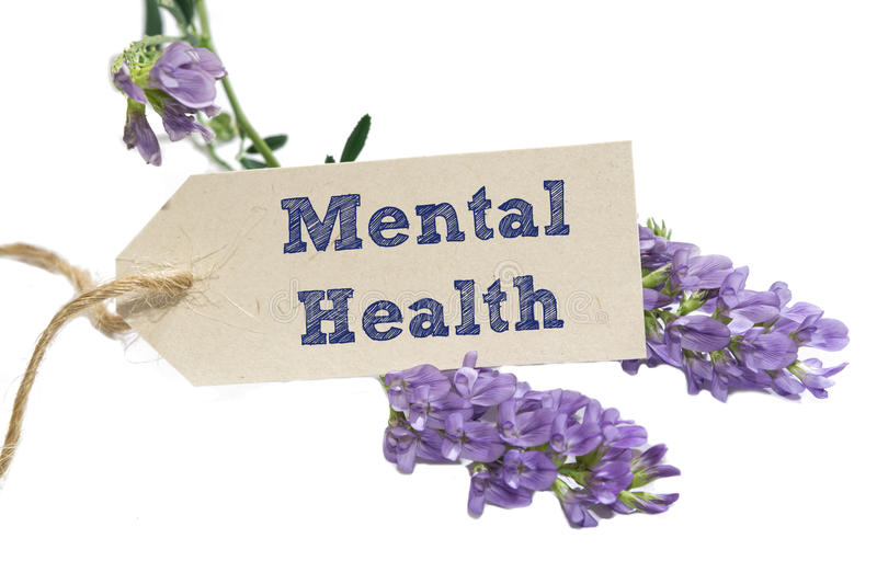Mental Health. Word written on a Looking card with flower stock images
