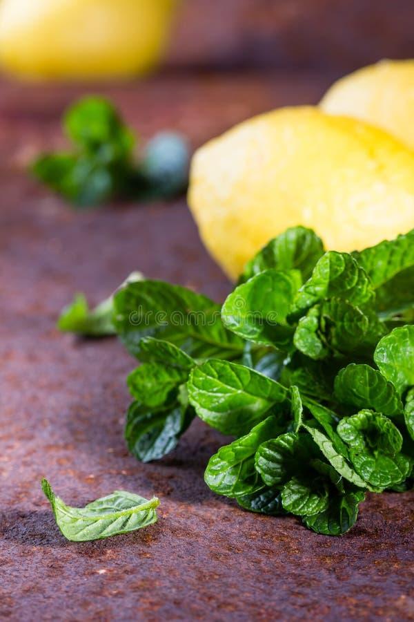 Menthe fraîche avec le citron Ingrédients pour le mohito ou la limonade photo libre de droits