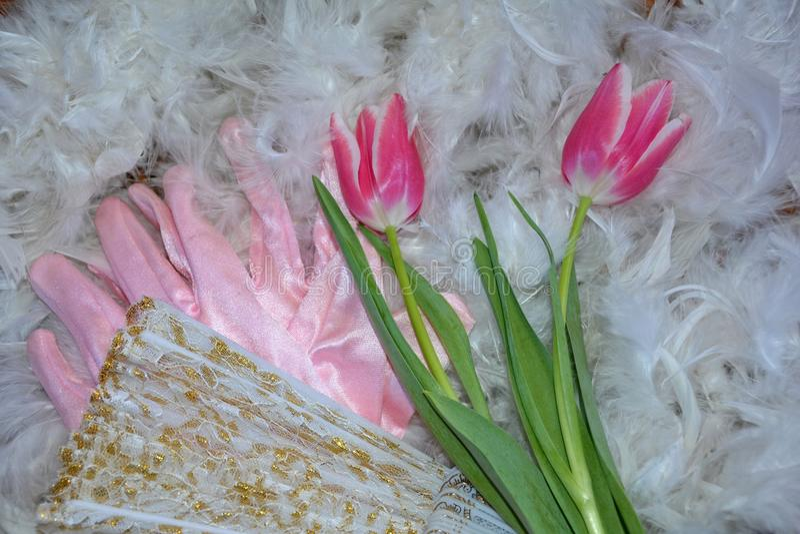 Mentira cor-de-rosa do Tulipa de duas tulipas em penas, com alguns luvas e pontos - fã fotografia de stock royalty free
