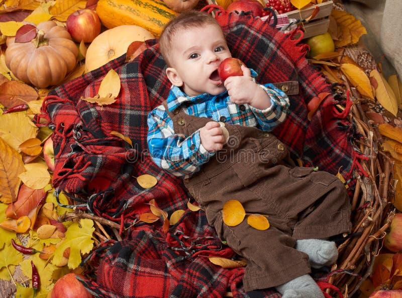 Mentira da criança na manta de tartã vermelha com as folhas de outono, as maçãs, a abóbora e a decoração amarelas, outono imagem de stock