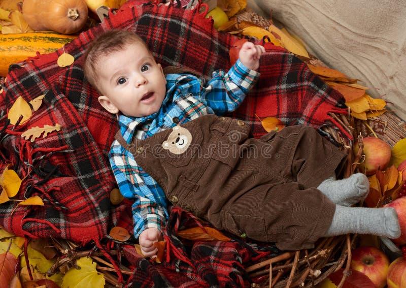 Mentira do menino da criança na manta de tartã com as folhas de outono, as maçãs, a abóbora e a decoração amarelas, outono imagens de stock