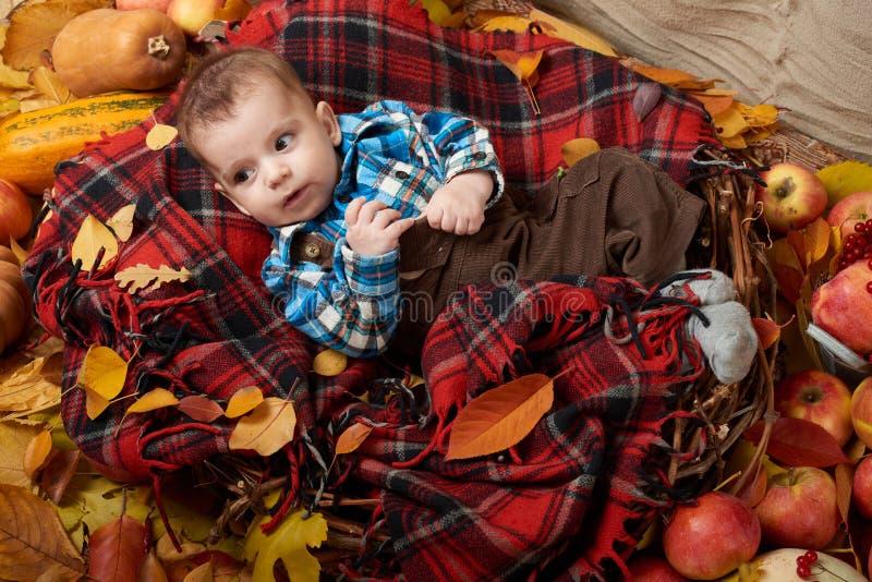 Mentira do menino da criança na manta de tartã com as folhas de outono, as maçãs, a abóbora e a decoração amarelas, outono imagem de stock