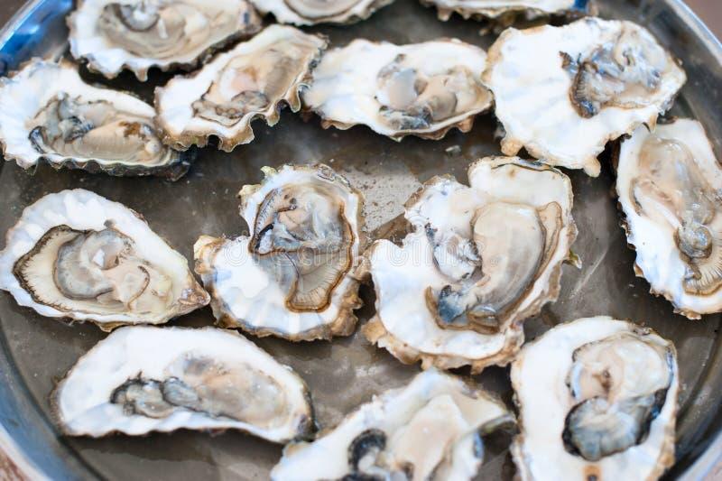 Mentira fresca das ostras em uma bandeja imagem de stock