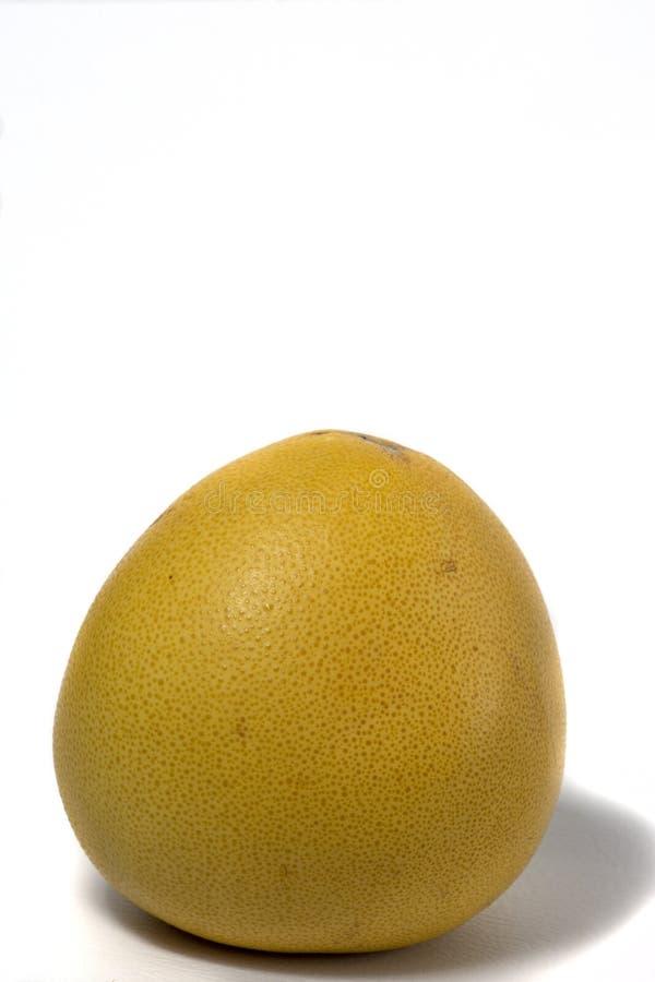 Mentiras do pomelo maduro isoladas no fundo branco imagens de stock