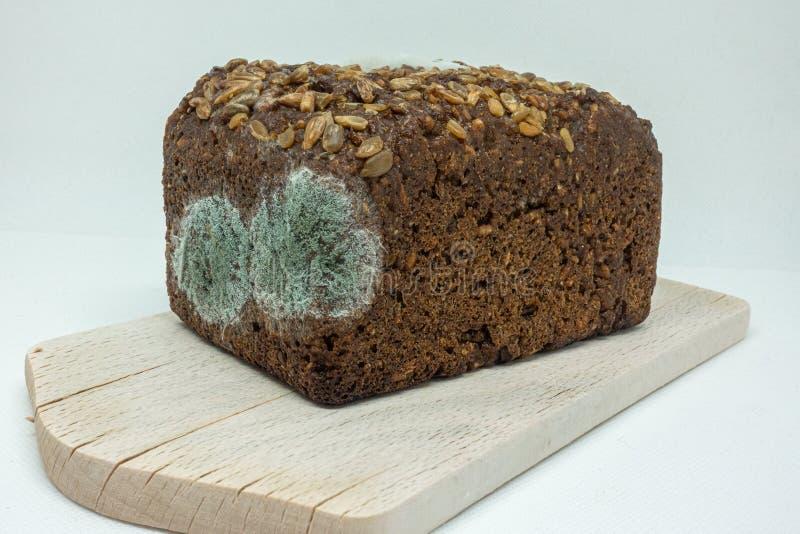 Mentiras mofados do pão de centeio em uma placa de madeira fotografia de stock royalty free