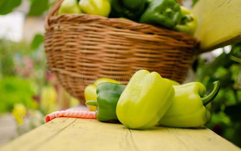 Mentiras verdes da pimenta doce em um banco de madeira fotografia de stock