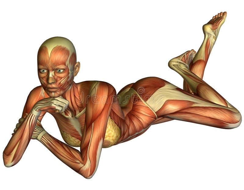 Menzogne della donna del muscolo illustrazione vettoriale