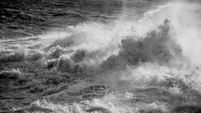 Mer agitée en noir et blanc photo libre de droits