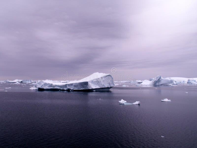 Mer antarctique avec des icebergs images stock