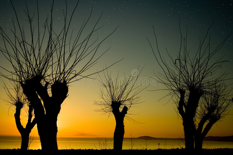 Download Mer-Bourgas Noire 2 Images stock - Image: 4489314