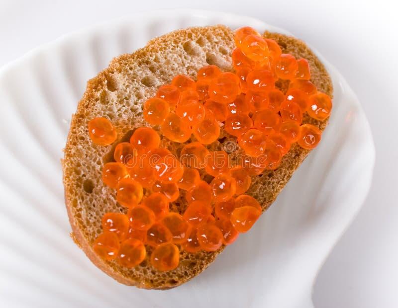 mer cavier röd sandwiche royaltyfri foto